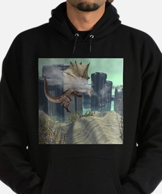 Flying dragon Hoodie