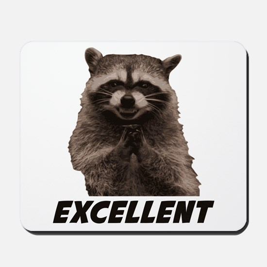 Excellent Evil Plotting Raccoon Mousepad