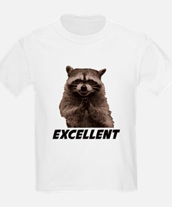 Excellent Evil Plotting Raccoon T-Shirt