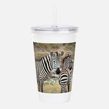 Zebras Acrylic Double-wall Tumbler