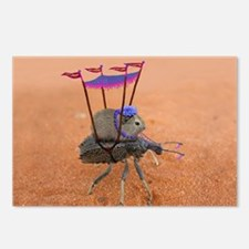 Unique Weevil Postcards (Package of 8)