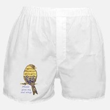 Music Gives my Soul Wings Boxer Shorts