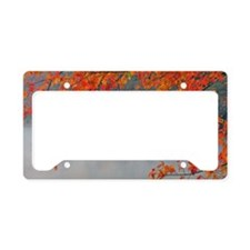 Autumn Colors and Mist License Plate Holder