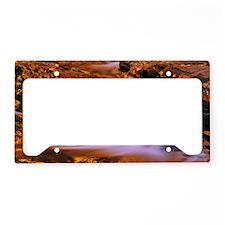 Autumn Cascade License Plate Holder