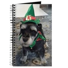 Pet Lover's Product's Journal