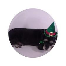 "Cute Pet care 3.5"" Button (100 pack)"