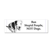 Unique Ban stupid people Car Magnet 10 x 3