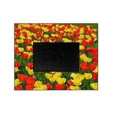 Red and Yellow Tulips Picture Frame