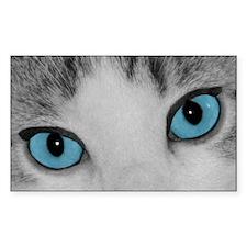 Blue Eyes Decal