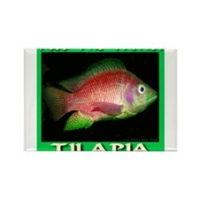 Feed The World Tilapia Magnets