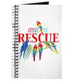 Hyacinth macaw Journals & Spiral Notebooks