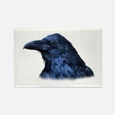 Portrait of a Raven Magnets