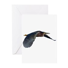 Green Heron Greeting Cards