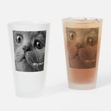 Why me cat. Drinking Glass