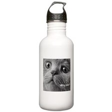 Why me cat. Water Bottle