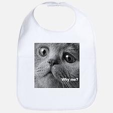 Why me cat. Bib