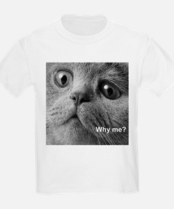 Why me cat. T-Shirt