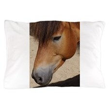 Funny Eve was framed Pillow Case