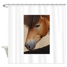 Unique Eve was framed Shower Curtain