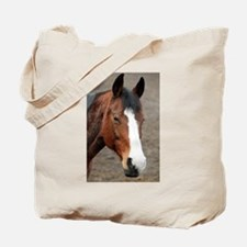 Unique Horse grooming Tote Bag