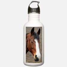 Cute Horse theme Sports Water Bottle