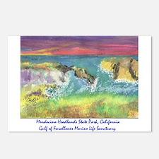 Mendocino Headlands State Park, California Postcar