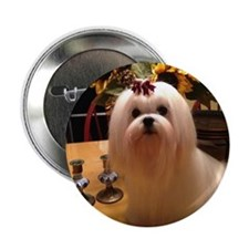 "Cute Maltese angel 2.25"" Button"