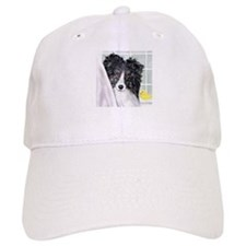 Bi Black Sheltie Bath Baseball Cap