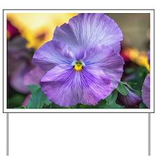 Lavender Pansy Yard Sign