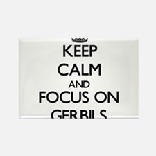 Keep Calm and focus on Gerbils Magnets