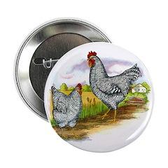 Antique Chicken Illustration Button
