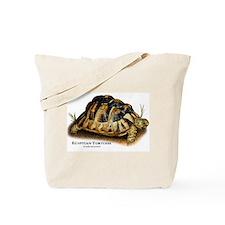 Egyptian or Kleinmann's Tortoise Tote Bag