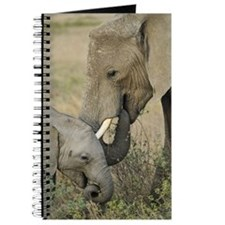 Momma and Baby Elephant Journal