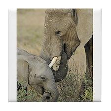 Momma and Baby Elephant Tile Coaster