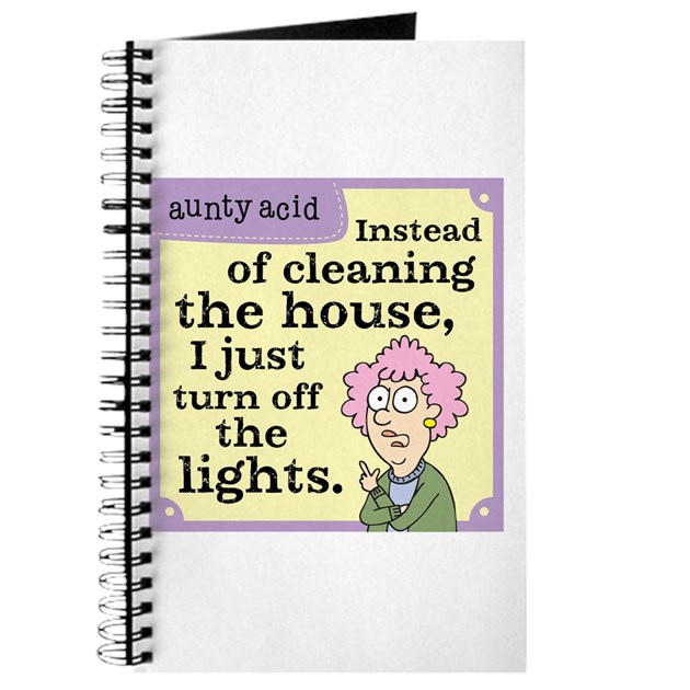 Aunty acid cleaning house journal by auntyacid for House of acid