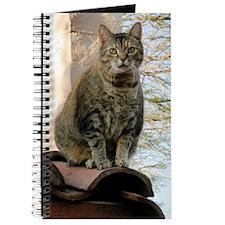 Betty Crocker on the Roof Journal