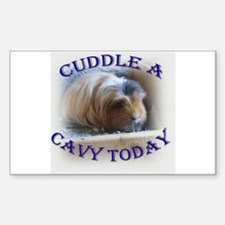 'Cuddle A Cavy Today' Rectangle Decal