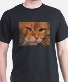 Gorgeous Orange Kitty T-Shirt