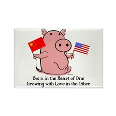 BORN IN THE HEART Rectangle Magnet (10 pack)