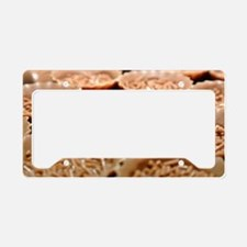 Cute Chocolate candies License Plate Holder