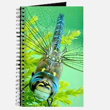 Cute Closeup Journal