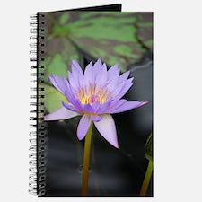 Cute Water element Journal
