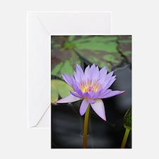 Lotus Flower Greeting Cards