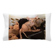 Sphynx Kittens Pillow Case