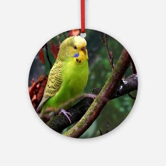 Unique Lovebird Round Ornament