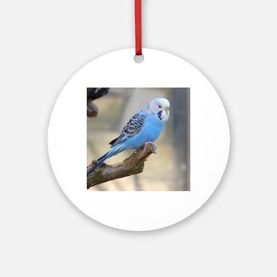 Funny Lovebird Round Ornament