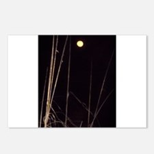 Unique Moon Postcards (Package of 8)