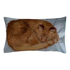 Unique Orange tabby Pillow Case