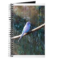 Unique Budgerigars Journal