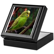 Cool Yellow budgie Keepsake Box